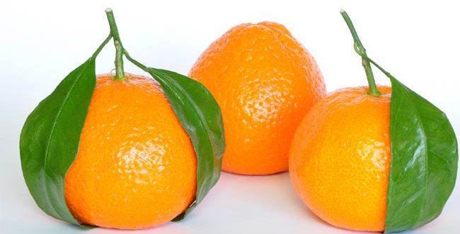10 benefici delle arance che forse non conoscete